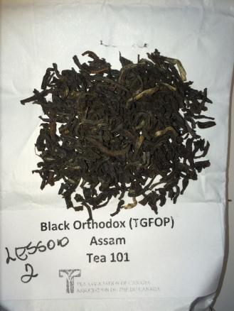 Black Ortho - dry