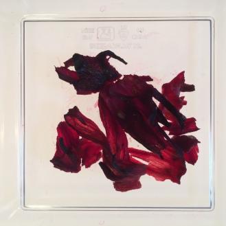 Org. Hibiscus - wet