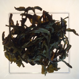 Orchid Oolong - wet