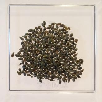 Org. Lemon Verbena - dry