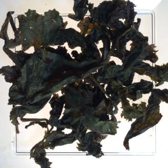 Organic Slimming Ti Kuan Yin Oolong - wet