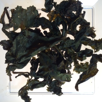 Organic Slimming Ti Kuan Yin Oolong - wet