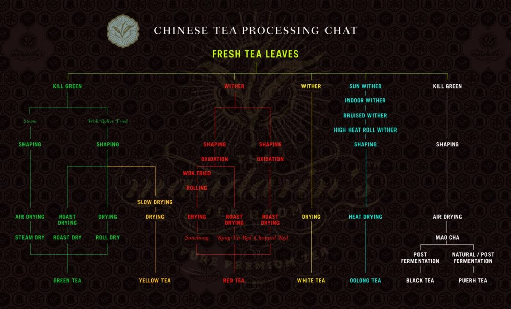 A-Chinese-Tea-Processing-Chart