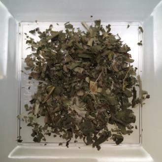 Marshmallow - dry